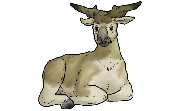 560x360 Collection Of Free Antelope Drawing Prehistoric Download On Ui Ex