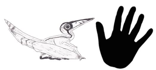 524x236 Dinosaur And Prehistoric Animal Drawings