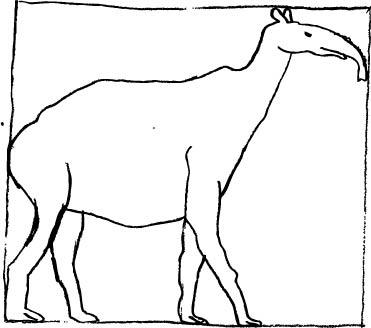 371x328 Pre Historic Art