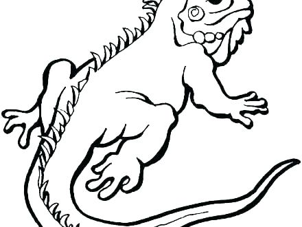 440x330 Frilled Lizard Coloring Pages