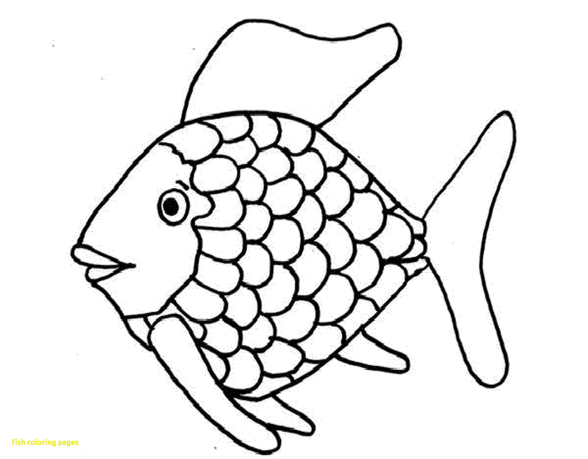 2000x1560 Fish Drawing For Colouring Personal Coloring Books Book Spiderman