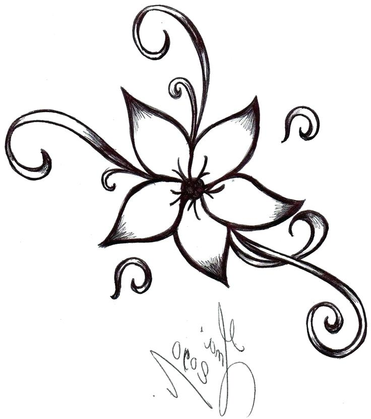 736x830 drawings of pretty flowers huge collection of pretty flower