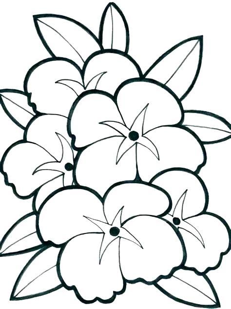 474x634 pretty drawings of flowers pretty flowers to draw step