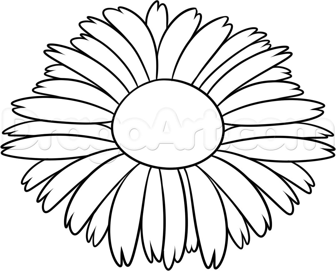 Pretty Flowers Drawing