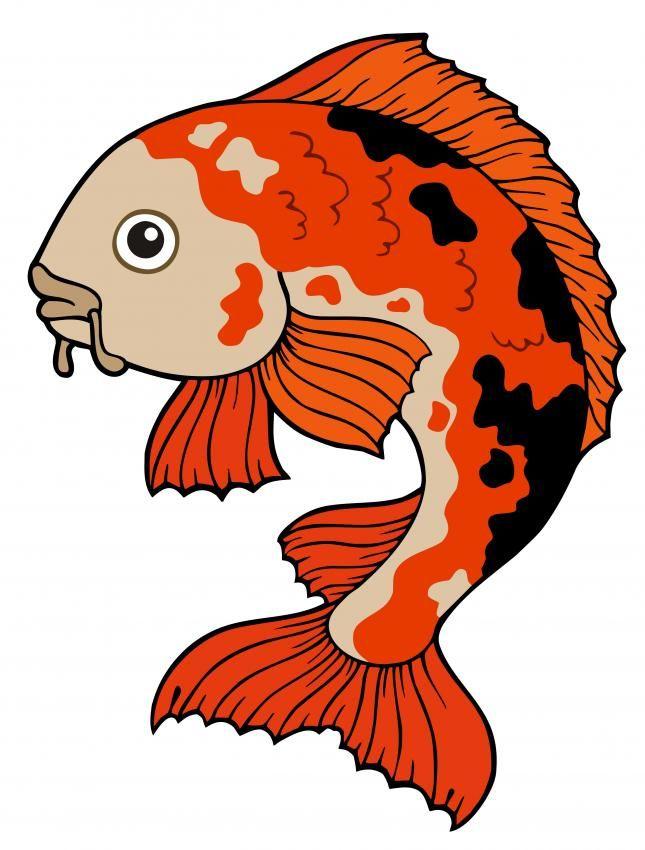 Pretty Koi Fish Drawing
