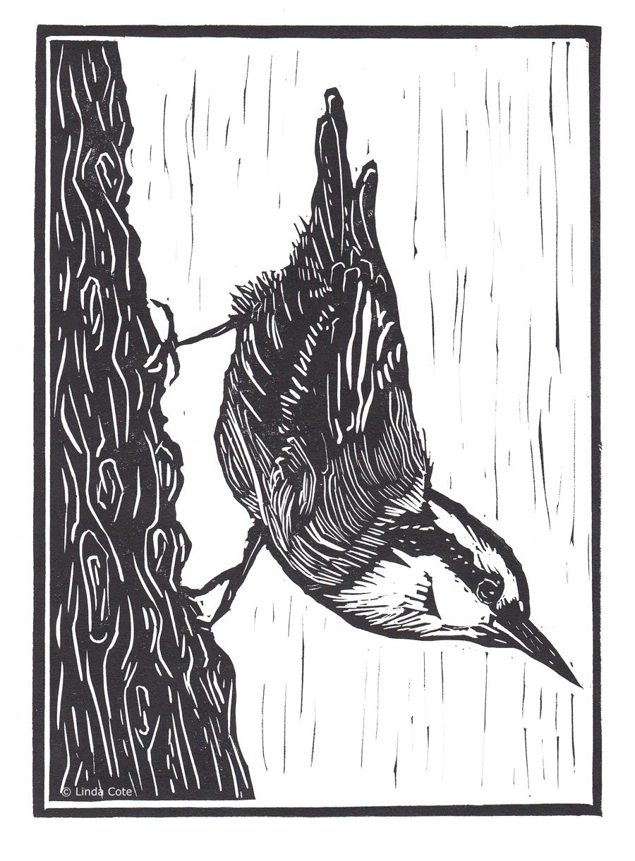 900x1221 little nuthatch linocut relief print hand pulled fine art etsy