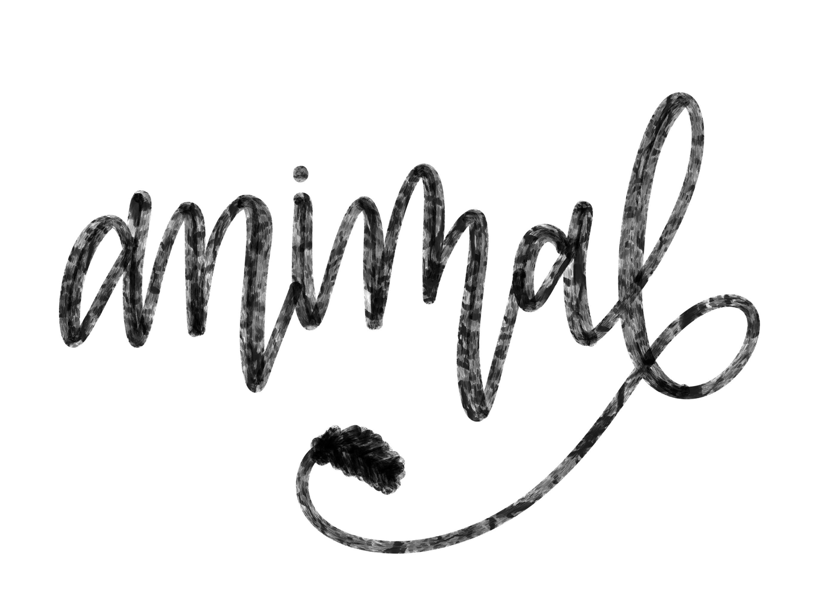 2732x2048 animal procreate brush wazz publishing