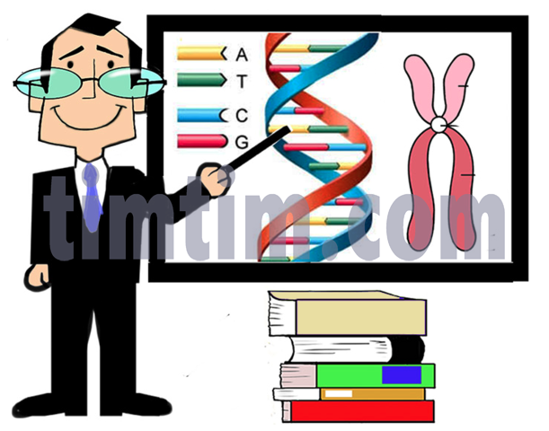 611x480 Free Drawing Of A Science Professor From The Category Occupations