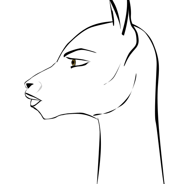 600x600 Llama Drawing Profile For Free Download