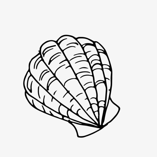 650x651 Black White Line Drawing Marine Life Design Image