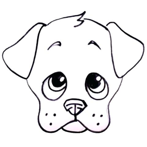 480x480 easy drawing of a puppy draw puppy dog easy puppy drawing steps