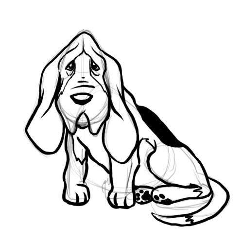 500x500 draw a basset hound dog drawings basset hound, dog outline