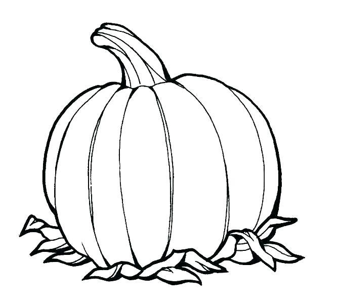 666x605 pumpkin color pages pumpkin printable coloring pages pumpkin