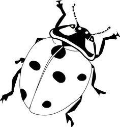 236x249 Ladybug Outline Pumpkin Clipart Inspirational Bug Line Drawing