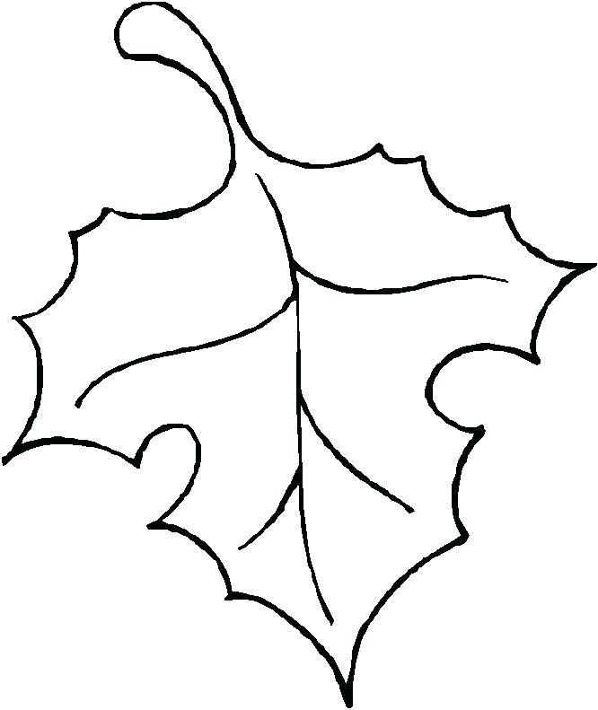 666x791 Outline Of A Pumpkin Outline Of A Pumpkin Outline Pumpkin Outline