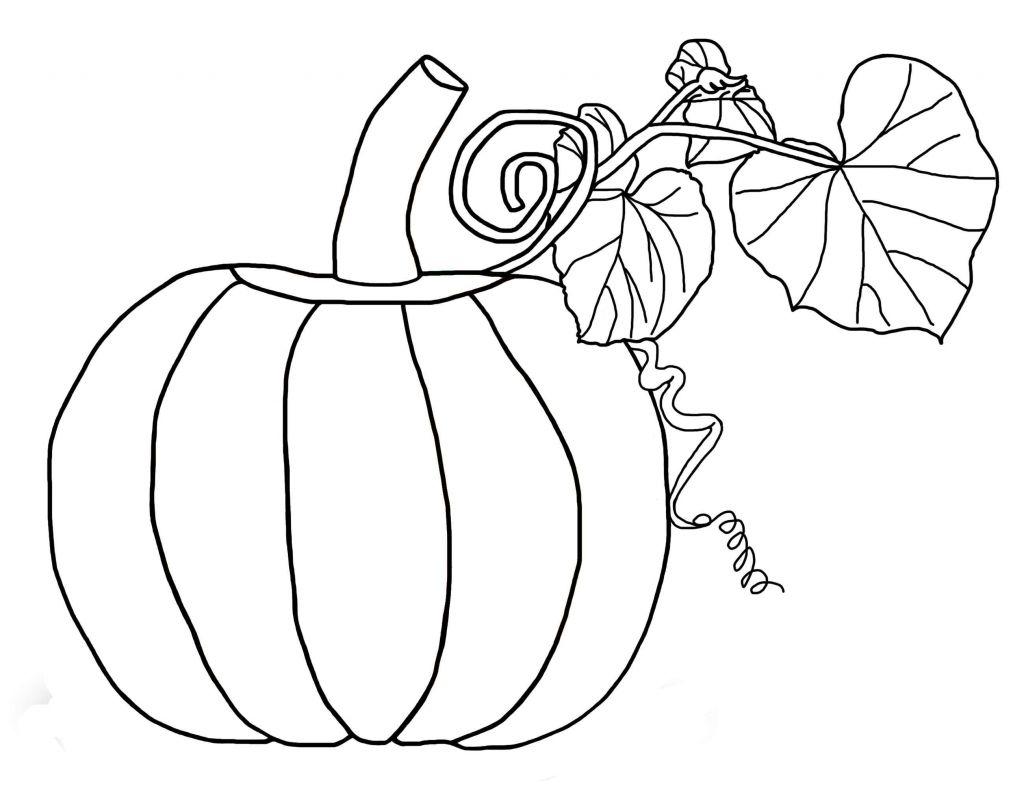1024x788 Pumpkin Outline Printable Christmas Clipart Best Of Free Pumpkin