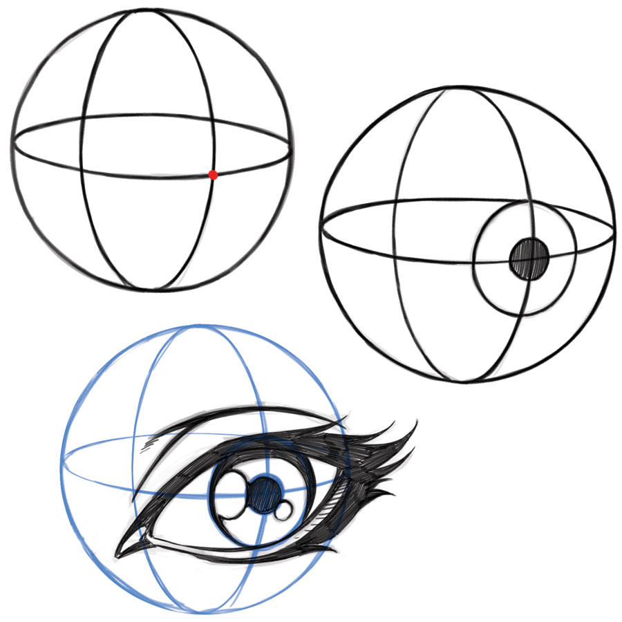 900x900 Eye Drawing Proportions And Shapes