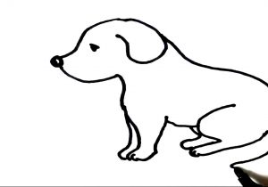 300x210 puppy dog drawing puppy dog face drawing at getdrawings free