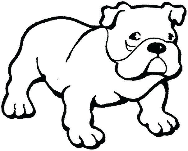 605x486 drawing of a bulldog bulldog puppy drawing english bulldog drawing