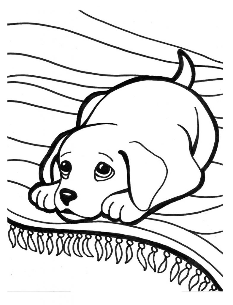 785x1024 Puppies Coloring Sheets Pages Excellent How To Draw Puppy Drawing