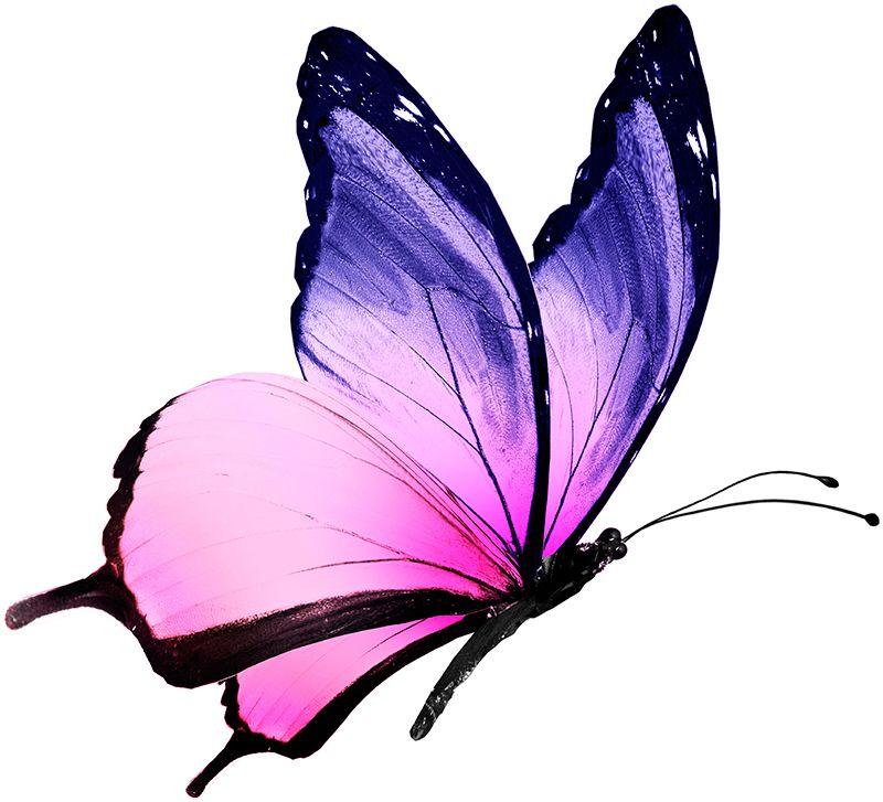 800x727 purple butterfly tattoos watercolor butterfly tattoo