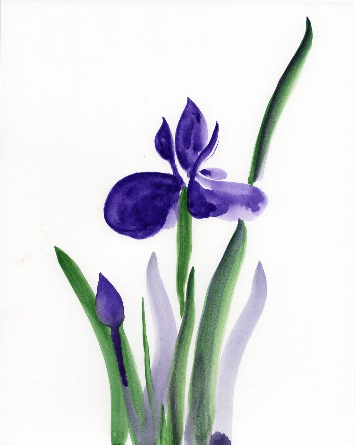 1140x1427 purple iris watercolor painting, purple flowers wall art, purple