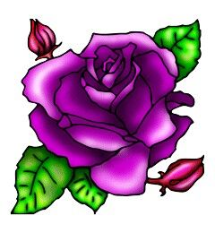 240x260 purple rose tattoos designs purple roses, purple glitter, purple