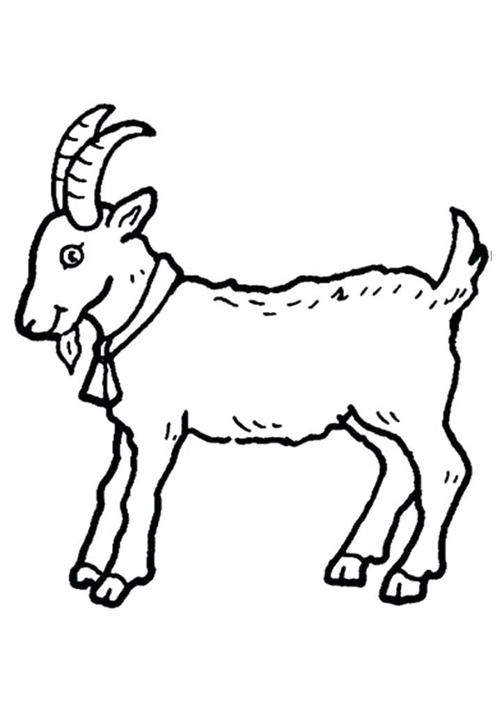 724x1024 Coloring Picture Of A Goat Coloring Pages Farm Animals Cute Goat