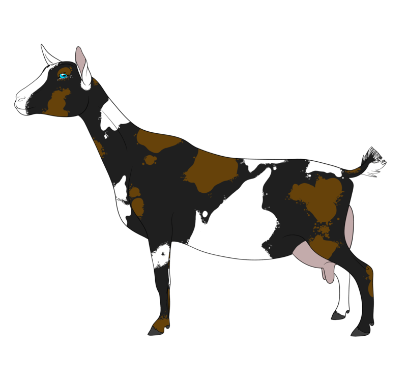 800x747 Cliparts For Free Download Goat Clipart Nigerian Dwarf Goat