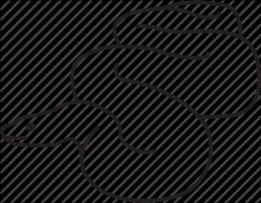 512x398 anaconda, boa, constrictor, giant, python, serpent, snake icon