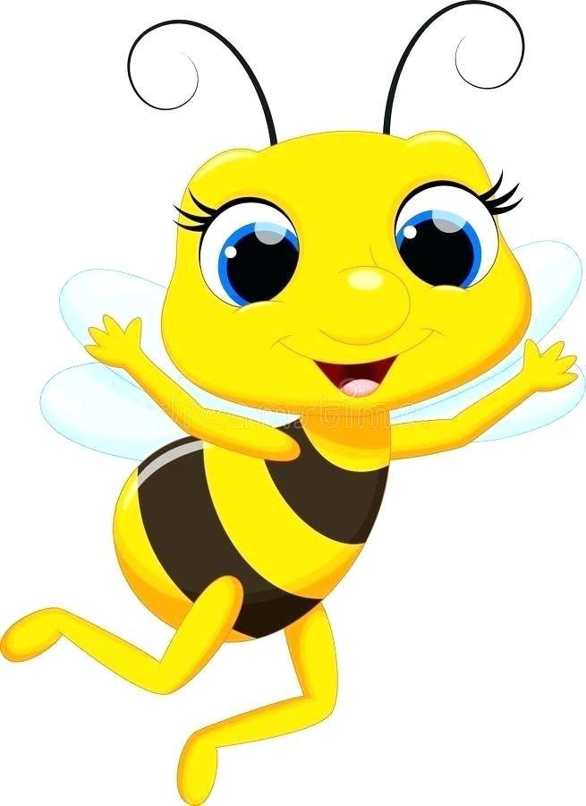 655x900 Honey Bee Drawing Cartoon Architecture Synonyms In Tamil