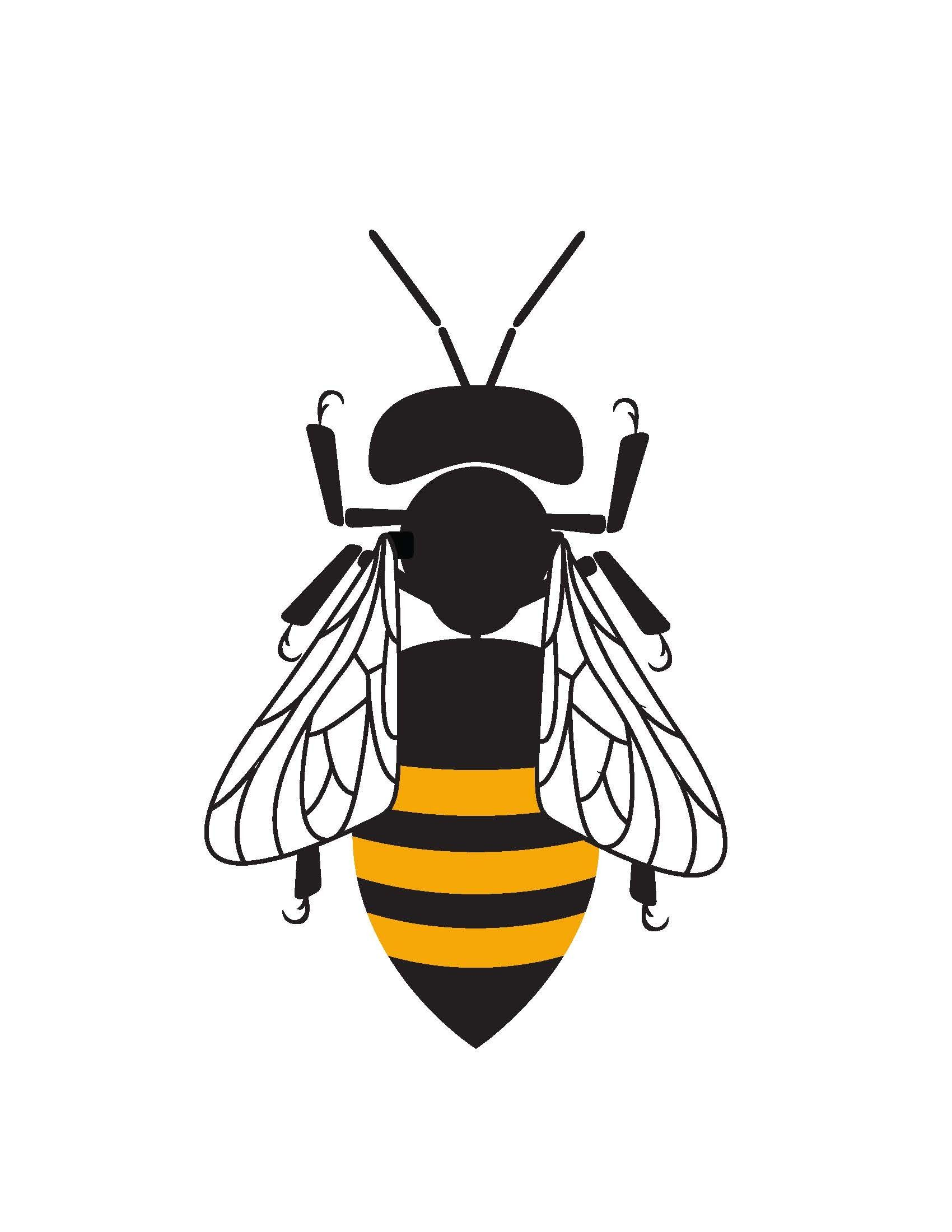 1700x2200 The Queen Bee Networks