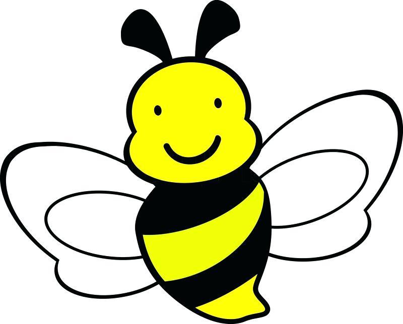 800x644 Bee Cartoon Drawing Queen Bee Cartoon Drawing