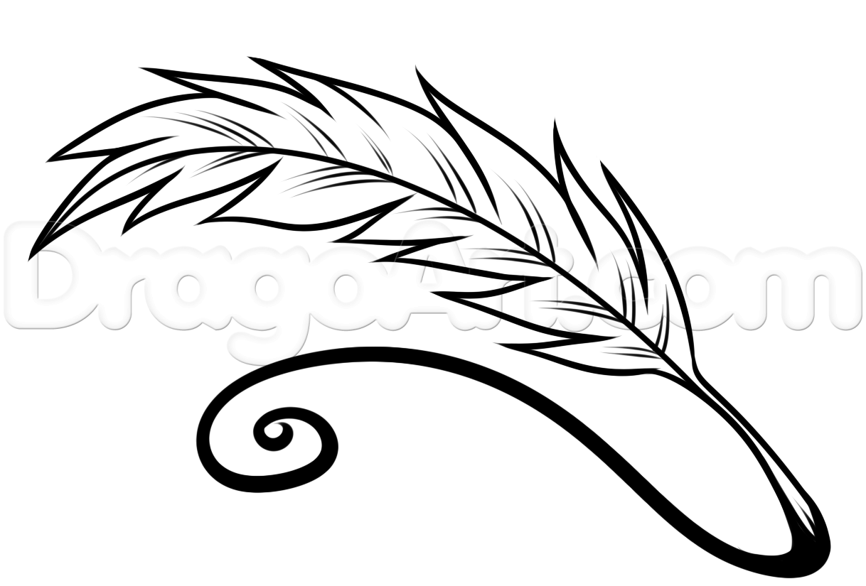 1218x825 step how to draw a quill, quill pen