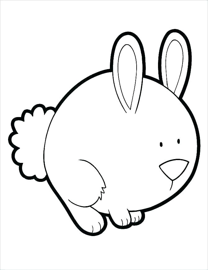 Rabbit Eating Carrot Drawing Free Download Best Rabbit Eating
