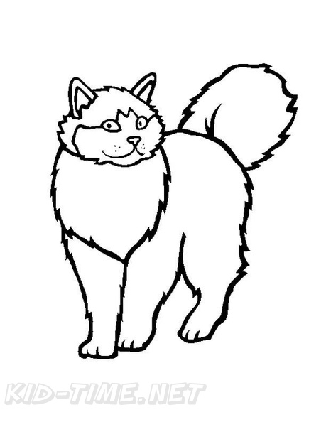 459x594 Ragdoll Cat Breed Coloring Book