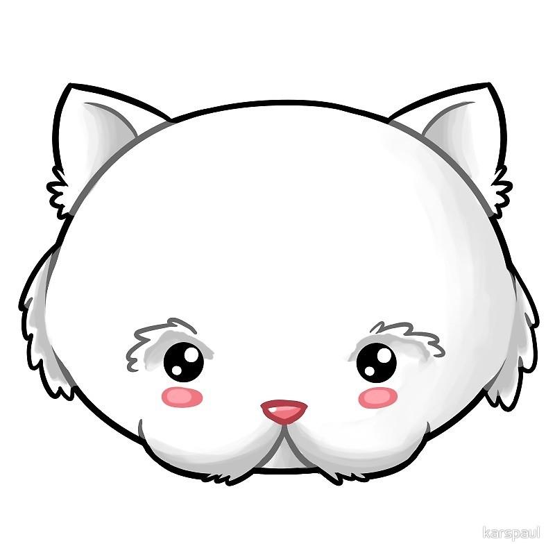 800x800 White Ragdoll Cat Kawaii