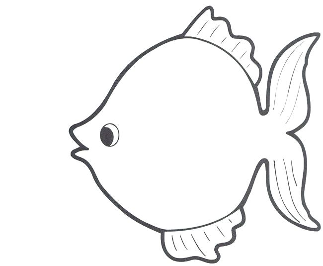 650x534 Fish Shape Template Coloring To Sweet Best Ideas On Draw Templates