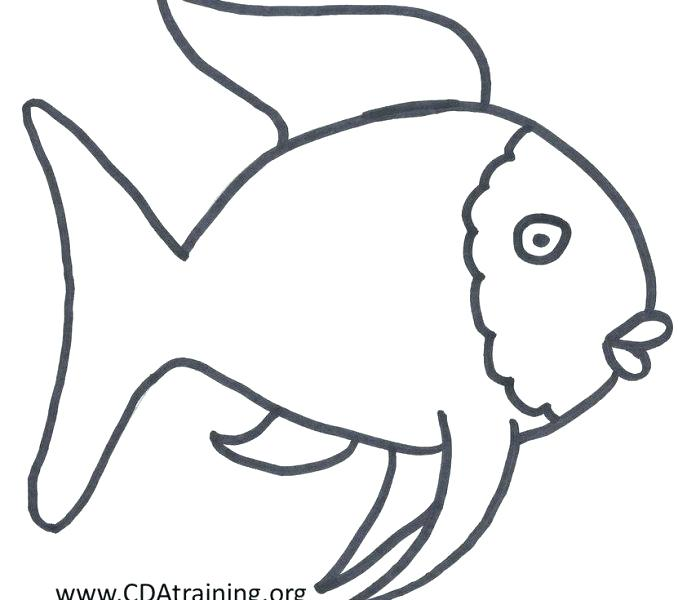 678x600 Surprise Big Mouth Fish Printable Template Craft Rainbow Cd