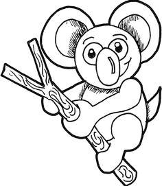 Rainforest Animals Drawings