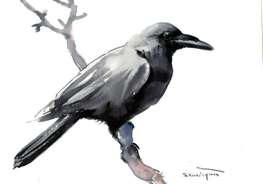Raven Bird Drawing