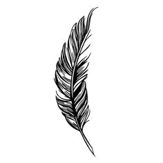 236x236 best raven feather images raven feather, feather tattoo