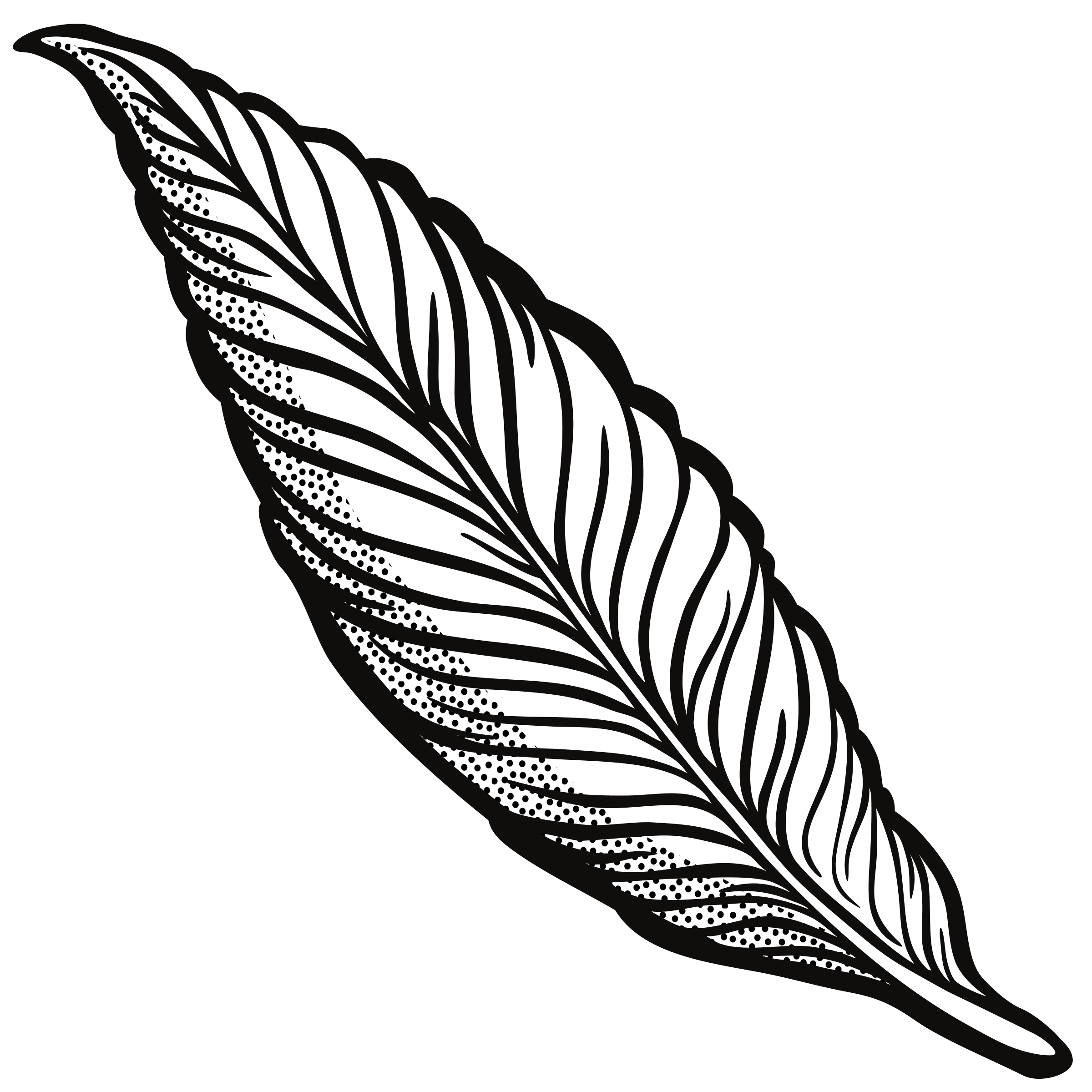 2400x2400 Feather Clipart Free Download On Scubasanmateo