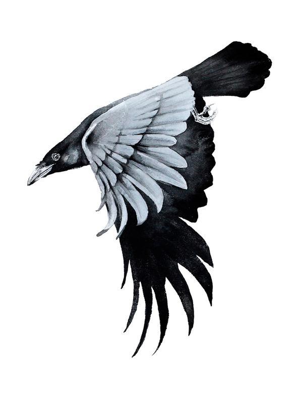577x800 Raven Ii As Canvas Print