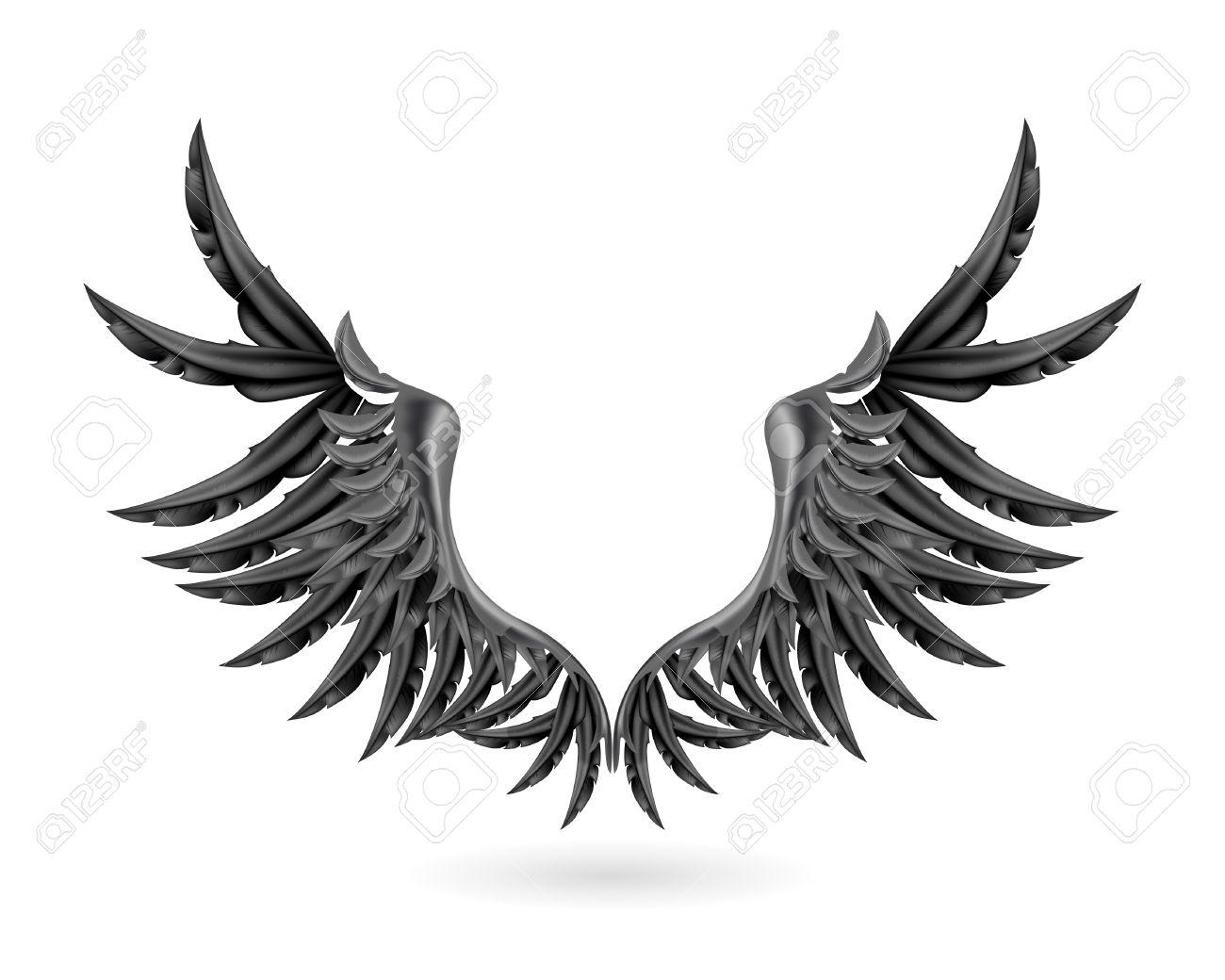 1300x1040 Raven Feather Clipart, Explore Pictures
