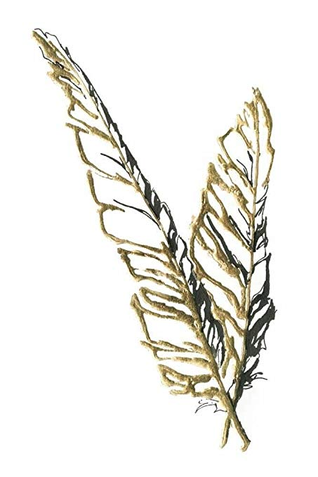 453x679 Gilded Raven Feather