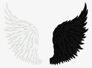 300x222 Angel Wings Png Download Transparent Angel Wings Png Images