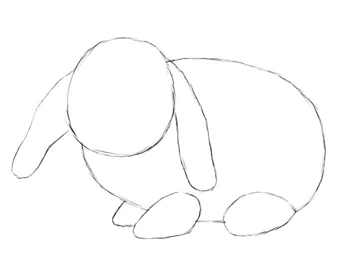 700x525 Bunny Drawings X Easter Bunny Drawings Cute
