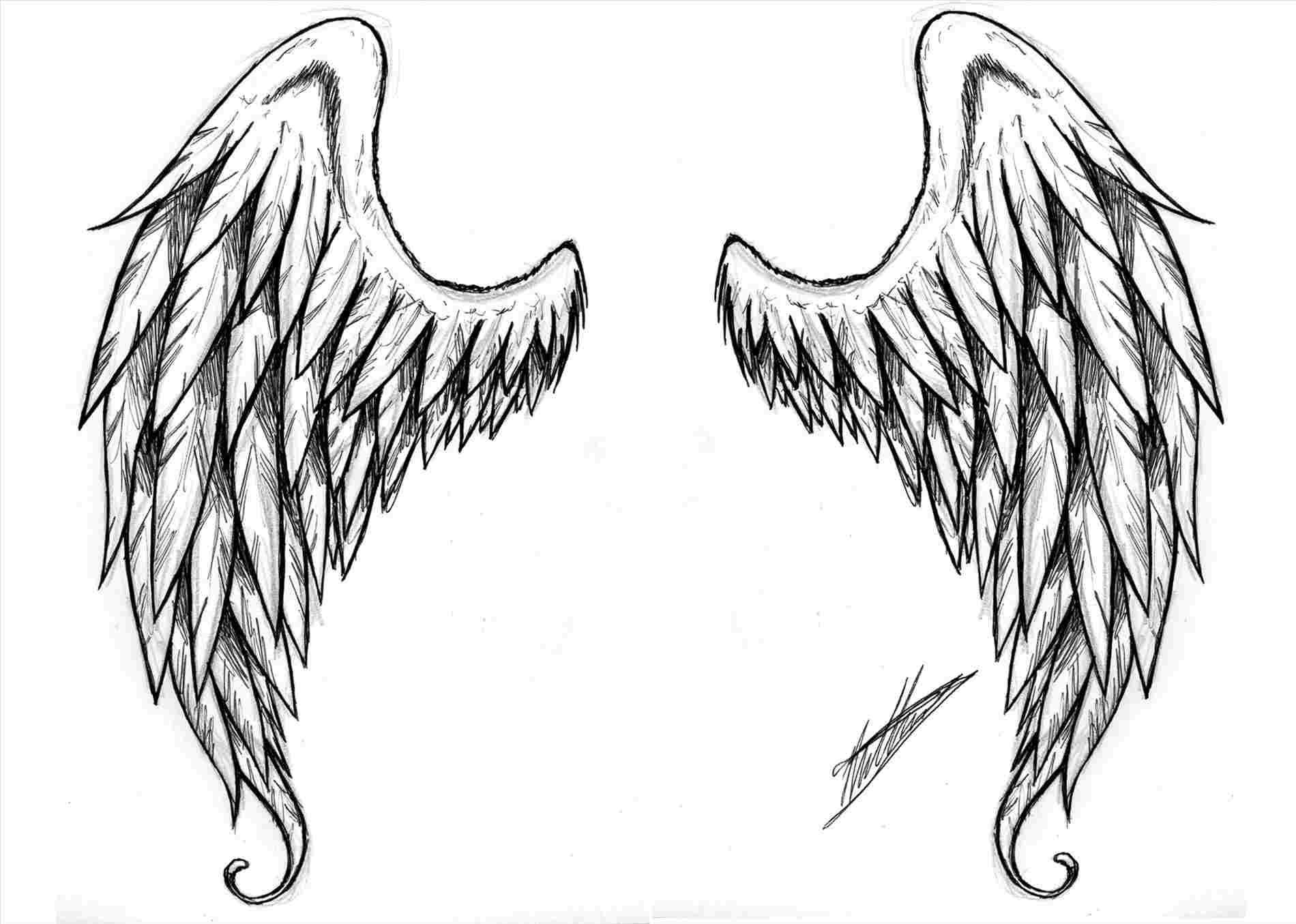 1900x1355 Cute Angel Wings Drawing