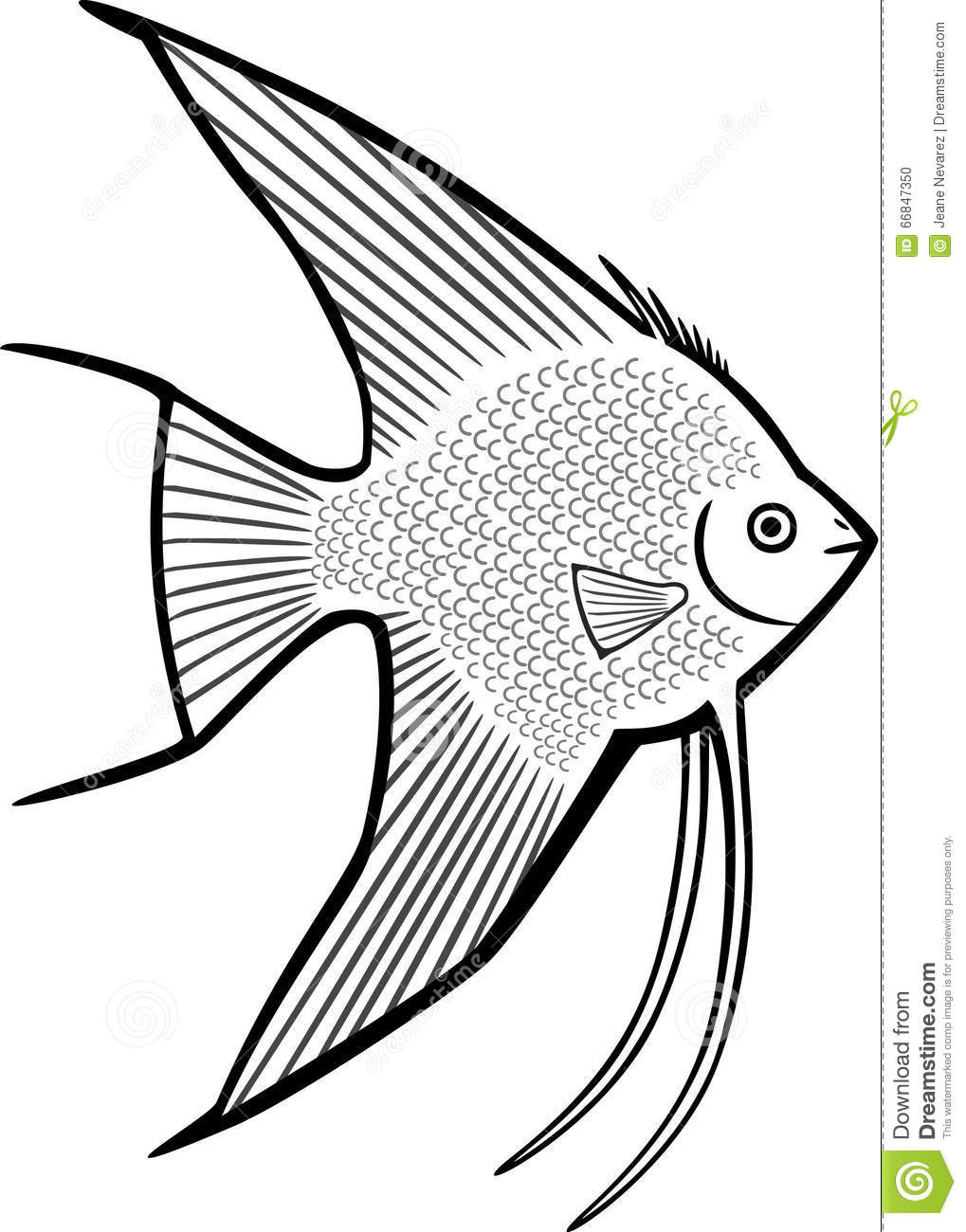 1019x1300 Angel Fish Coloring Page